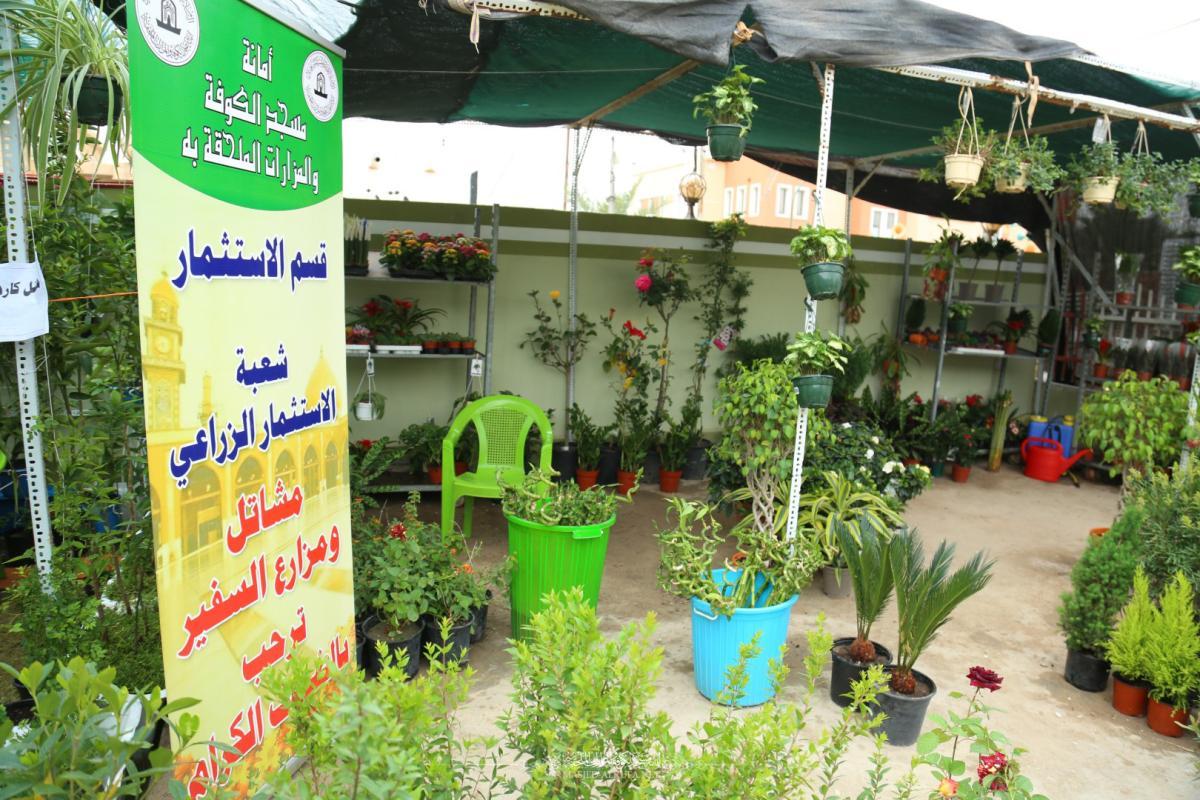 بمشاركة امانة مسجد الكوفة تنطلق فعاليات مهرجان الربيع 11 لنقابة المهندسين الزراعيين