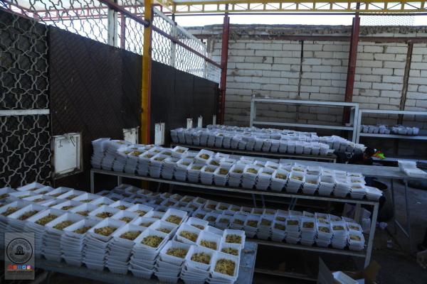 امانة مسجد الكوفة المعظم تواصل توزيع الطعام على زوار اربعينية الإمام الحسين (عليه السلام)